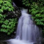 Wasserfall in Bali